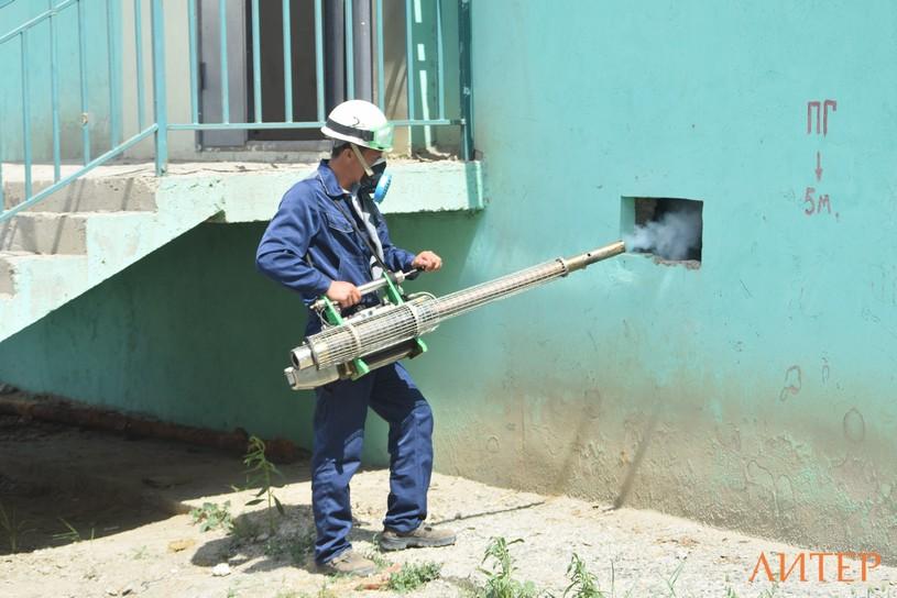 В Атырау борются с комарами в 4 смены