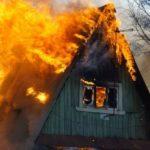 С апреля в СКО от пожаров пострадало 30 гектаров леса 1