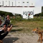 На Алаколе открыт летний туристский сезон 2