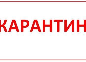 Ольгинка в Акмолинской области на карантине 3