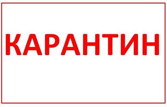 Ольгинка в Акмолинской области на карантине 1