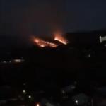 В поселке Косшы под столицей горит сухостой (ВИДЕО) 1