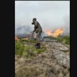 В поселке Косшы под столицей горит сухостой (ВИДЕО) 2