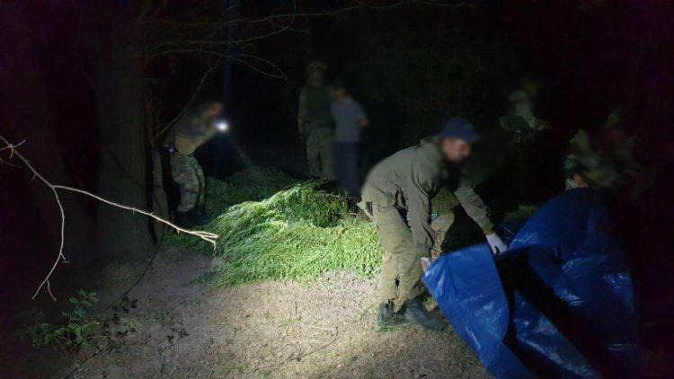 Полицейские задержали сельчанина с более 125 кг марихуаны 1