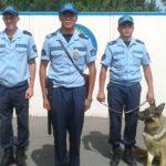 Казахстанские стражи изъяли почти 17 тонн наркотиков за 3 месяца 1