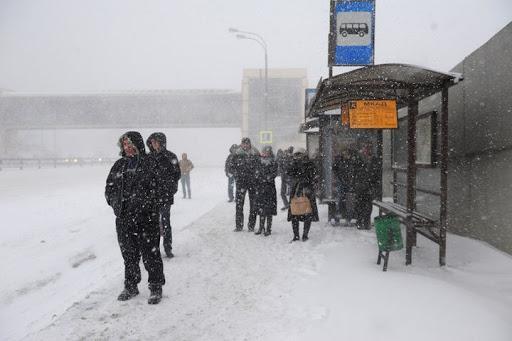 Автобус переехал ногу ребенку на остановке в Караганде 1