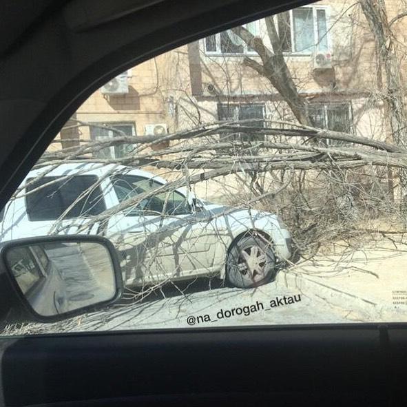 Из-за ветра навес рухнул на автомобиль в Актау