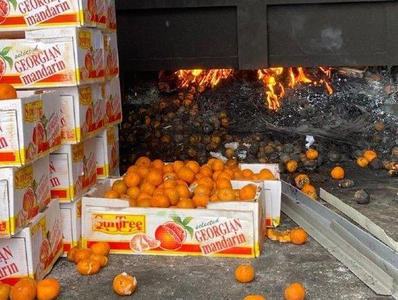 Астанинские инспекторы уничтожили более тонны опасных фруктов из Грузии 1