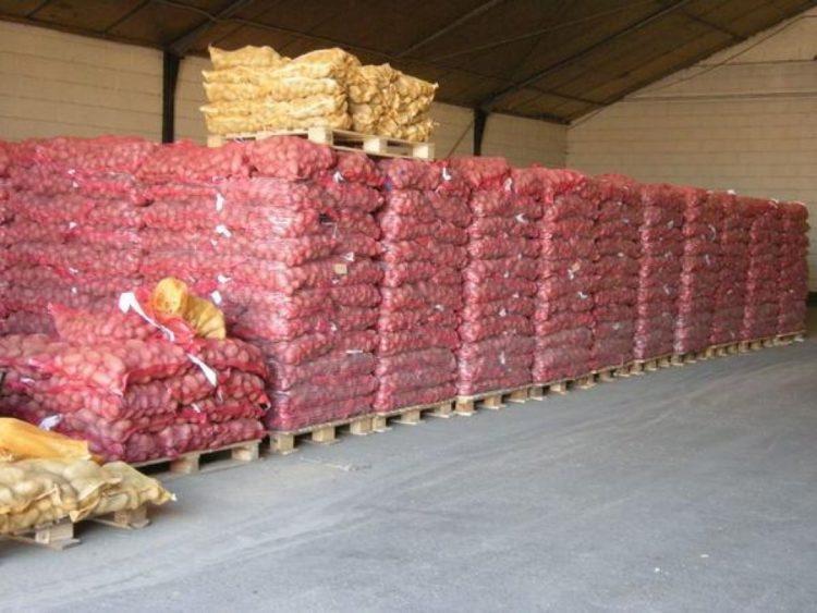 Почему казахстанский картофель «не доживает» до сезона, рассказали в Минторговли