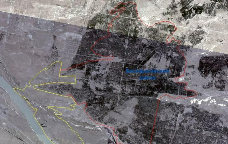 Снимки из космоса показали масштабы лесного пожара в ВКО 1
