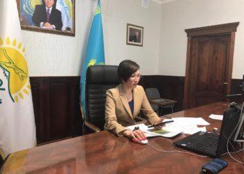 Просьбы о помощи: до 500 звонков в день принимает филиал партии Nur Otan в СКО