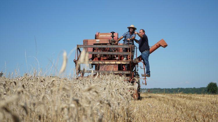 Аграрная кредитная корпорация уже направила 60,98 млрд тенге на весенне-полевые работы 1