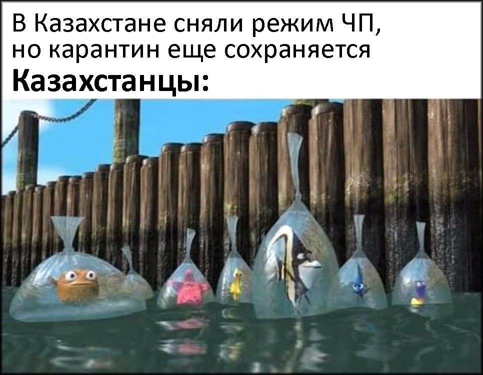 Дайджест дня: Токаев, карантин и налоги 1