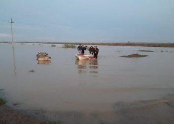 Фото: пресс-служба акимата Туркестанской области