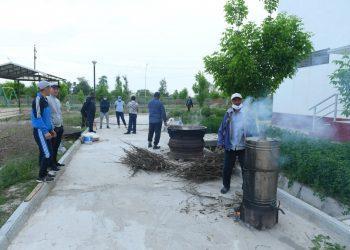 Фото: Региональная служба коммуникаций Туркестанской области