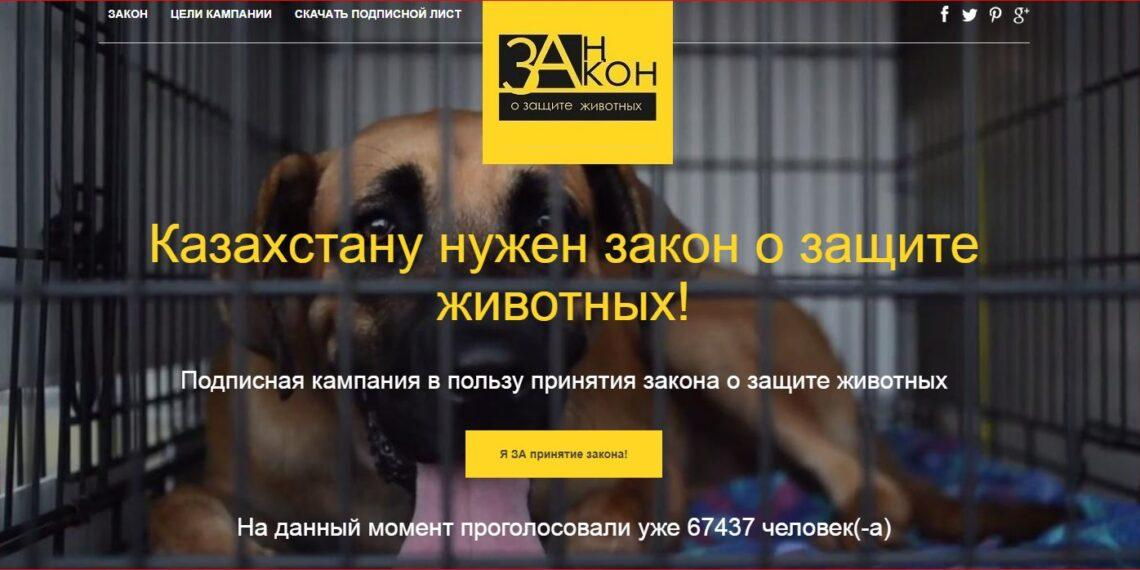 Казахстанцы требуют наказывать живодеров лишением свободы на 5-7 лет 1