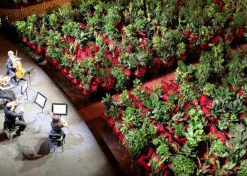 Оперный театр Барселоны впервые открылся после карантина и провел концерт для 2 292 комнатных растений 1