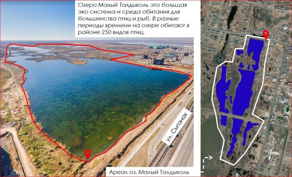 Озеро Талдыколь в Нур-Султане намерены осушить. Экологи объяснили, почему нельзя этого делать 3