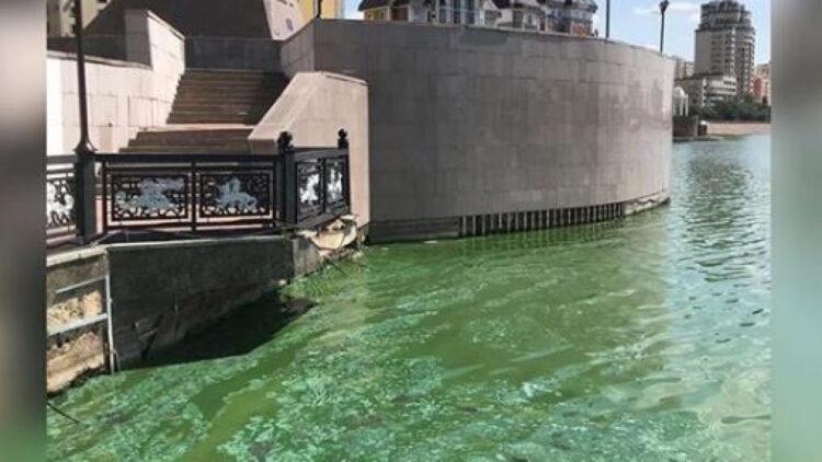 Зеленая вода в реке Есиль: что ответило Минэкологии на жалобы астанчан 1