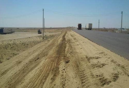 "Сайгаки в опасности: В МИИР пообещали провести экоэкспертизу дороги ""Центр-Запад"" 1"