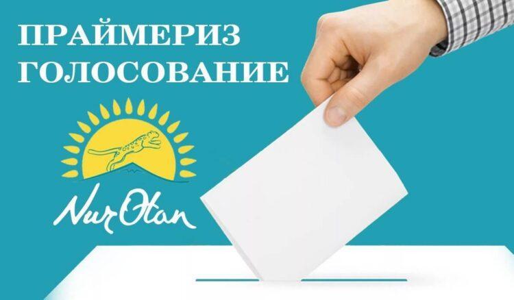 Партия Nur Otan приостановила прием новых членов 1