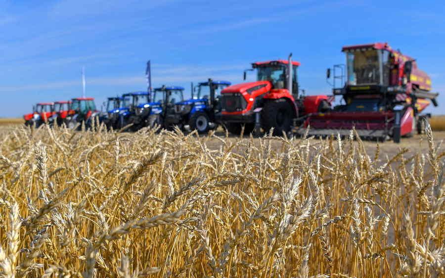 Токаев осмотрел поля в Костанайской области: «У вас в этом году хороший урожай» 2