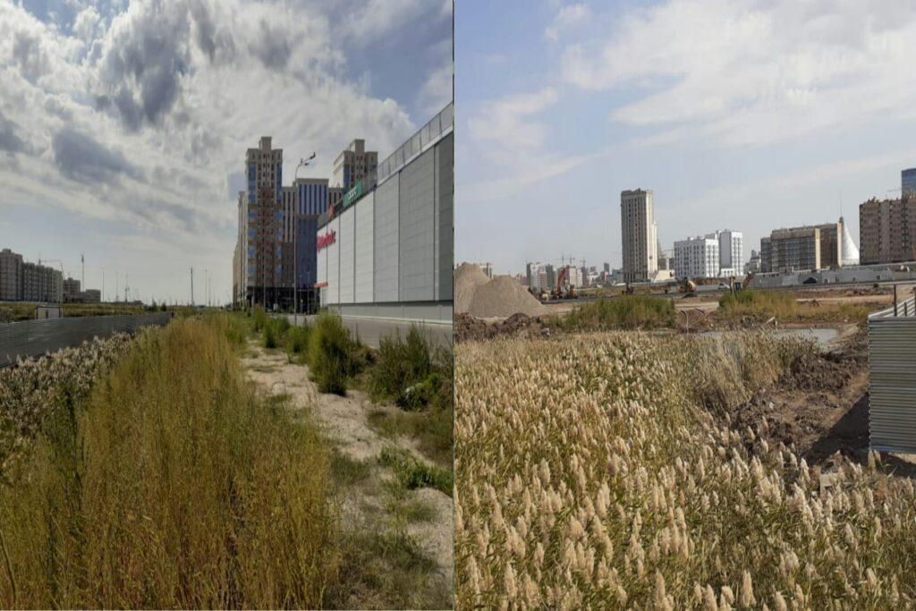 Малый Талдыколь: Ученые выступили против осушения озера в Нур-Султане 4