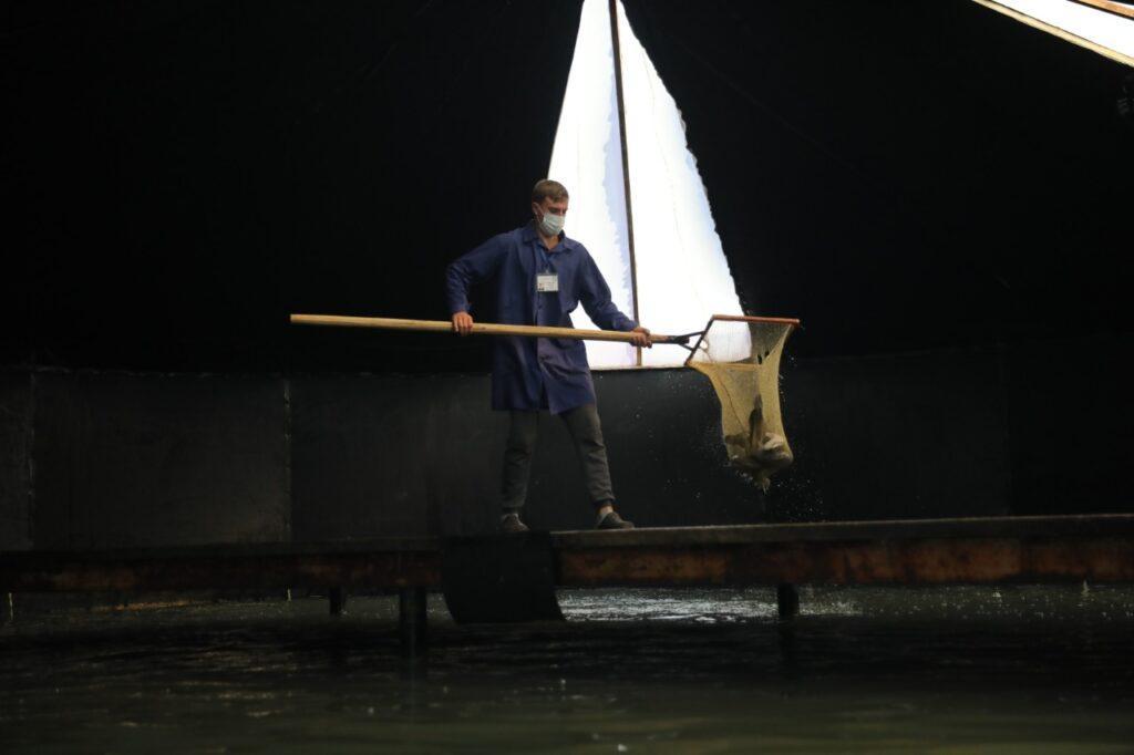 В Капчагае есть уникальный рыбопромышленный комплекс. Для чего он нужен и как он работает 1