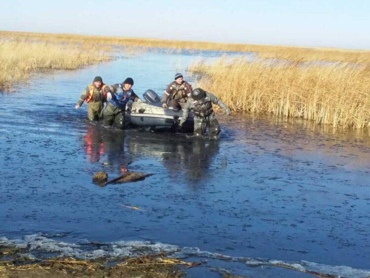 Фото: пресс-служба ДЧС Акмолинской области