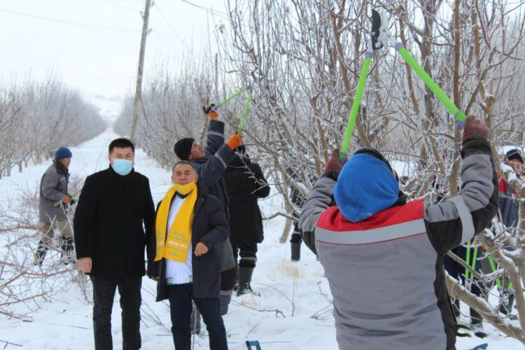 Nur Otan повысит туристический потенциал Тюлькубаса 1