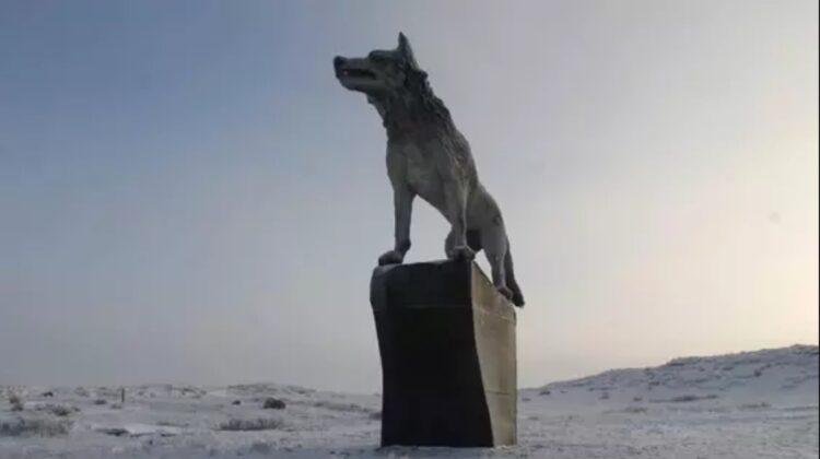 Десятиметровую скульптуру волчицы установили в Карагандинской области 1