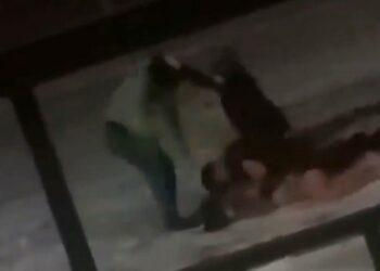 Фото: скриншот с видео драки