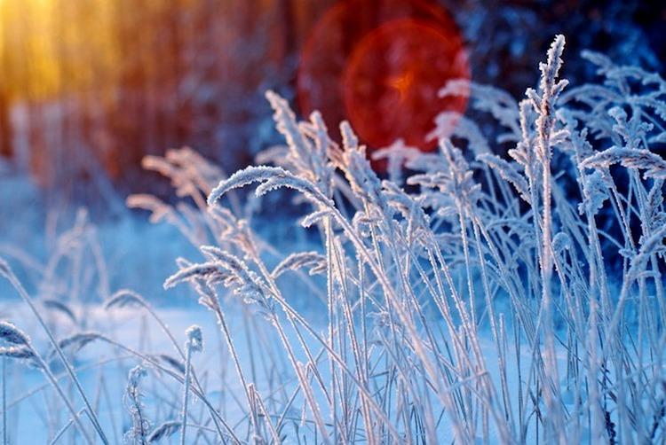 Фото: gismeteo.ru
