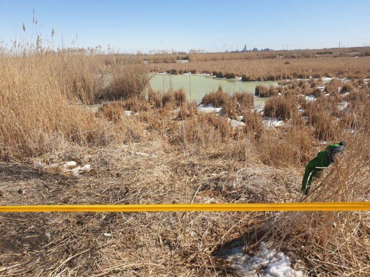 Фото: ДЧС Кызылординской области