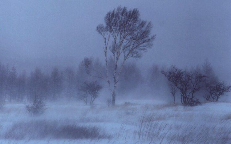 Фото: nedelya40.ru