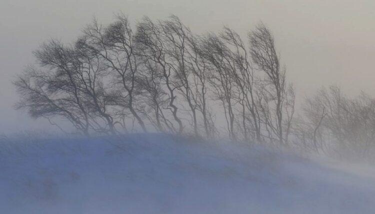 Фото: sputnik.ru