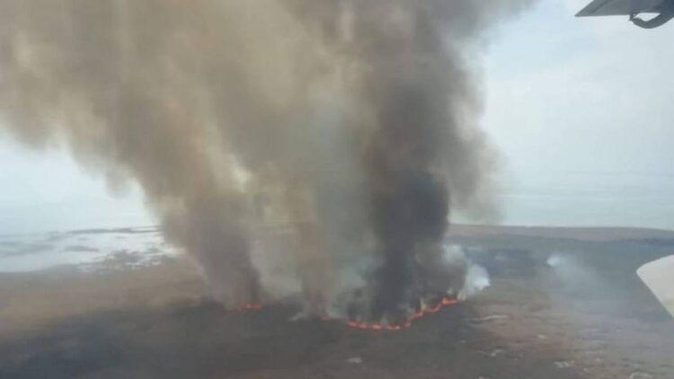 В Павлодарской области горит сосновый бор 1