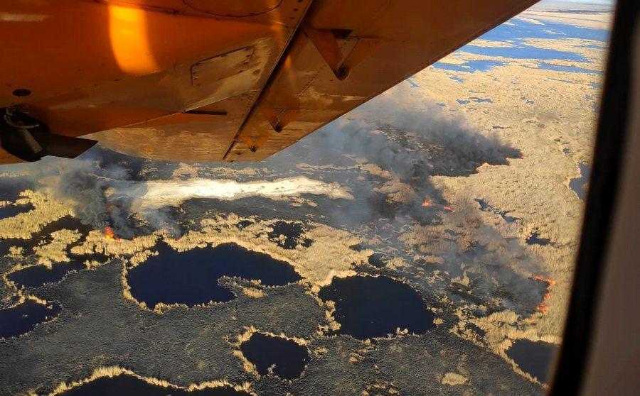 Пожар охватил огромную площадь с лесами и камышом в Алматинской области 2