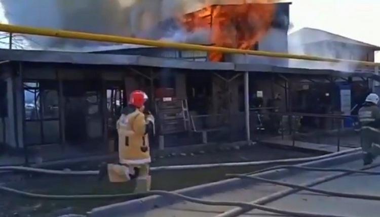 Фото: скриншот с видео ДЧС Алматы