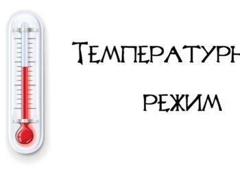 terman-s.ru