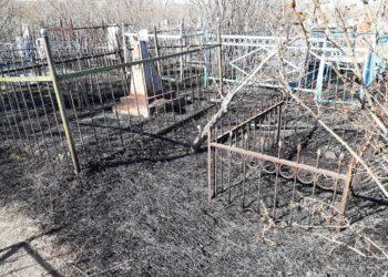 Крупный пожар произошел на кладбище в Караганде 2