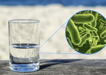 Более сотни казахстанцев заразились опасной инфекцией из-за питьевой воды 1