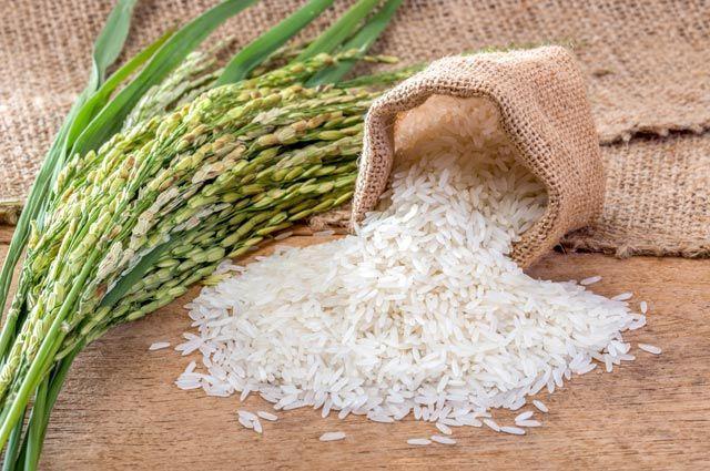 Фото: agrifoodltd.com