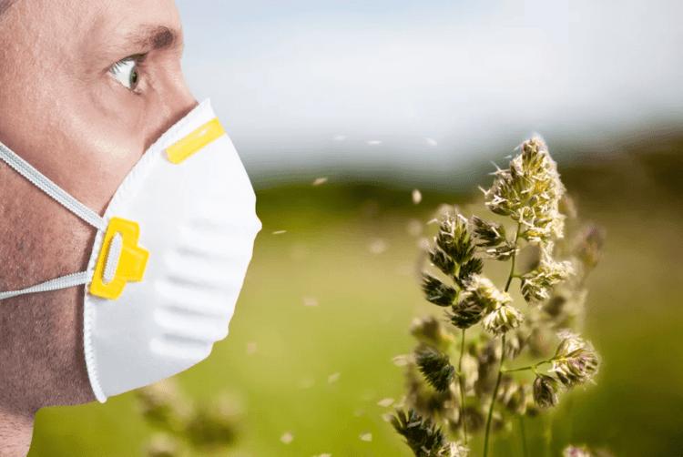 Аллергики Казахстана