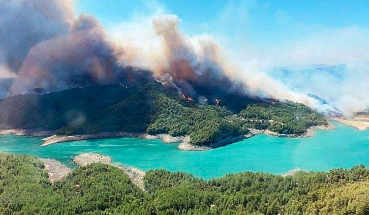 Лесные пожары в Турции: казахстанцы помогают местным жителям 1