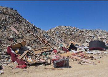 Фото пресс-службы департамента экологии
