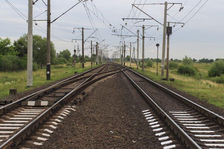 Фото: gazeta-na-varshavke-chertanovo-severnoe.ru