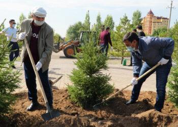 В Нур-Султане запустили экоакцию по посадке деревьев 1