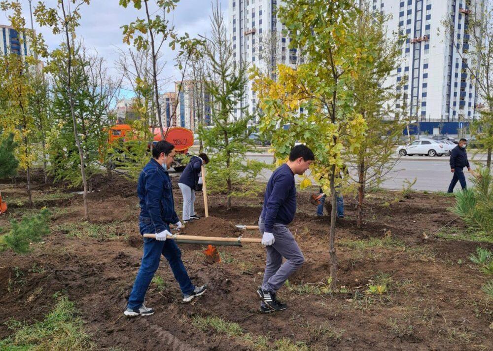 120 деревьев высадили сотрудники Nur Otan в столице