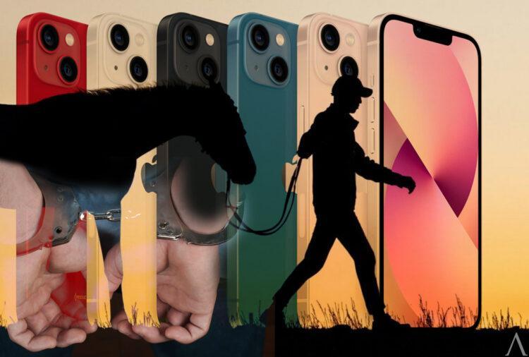 В Усть-Каменогорске друзья крали скот ради нового iPhone 1